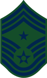AF E-9 CCMSGT Command Chief Master Sergeant (BDU) Decal