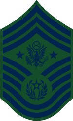 AF E-9 CMSAF Chief Master Sergeant of the Air Force (BDU) Decal